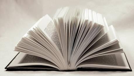 Plan d'action sur le livre – Le ministre Fortin lance un chantier de révision réglementaire associé à la Loi du livre